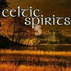 Celtic Spirits Vol. 5 (CD2)