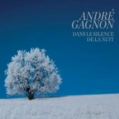 Dans Le Silence De La Nuit - Andre Gagnon