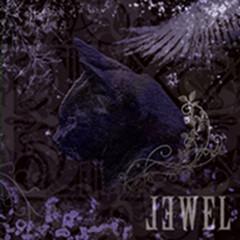 Jewel - Black Cat