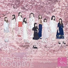 NEVER SAY GOODBYE -arigatou- - Rev.from DVL