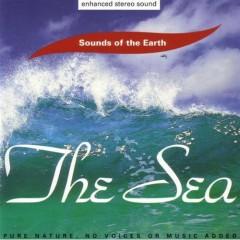 The Sea - David Sun