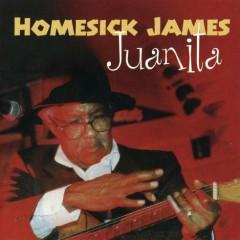 Juanita - Homesick James