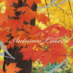 Autumn Leaves  - Colors Of The Land