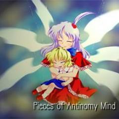 Pieces of Antinomy Mind