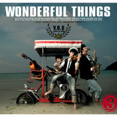 Wonderful Things - V.O.S