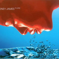 Pure - Boney James