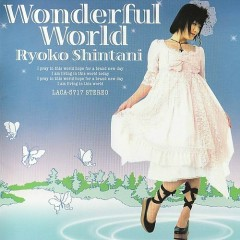 Wonderful World - Ryoko Shintani
