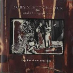 The Kershaw Sessions (BBC) - Robyn Hitchcock