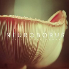 Chill House Spore - Neuroborus