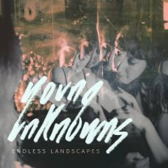 Endless Landscapes - Young Unknowns