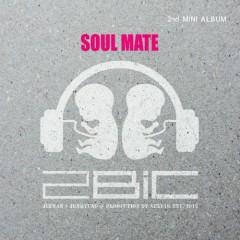 Soul Mate - 2Bic