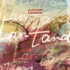 Lantana - OLDCODEX