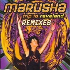 Trip To Raveland (Remixes)