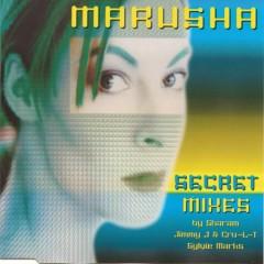 Secret (Mixes)