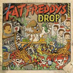 Dr. Boondigga & the Big BW - Fat Freddy's Drop