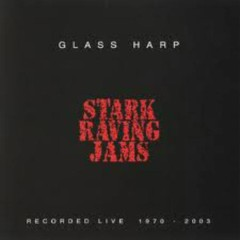 Stark Raving Jams (CD1) - Glass Harp