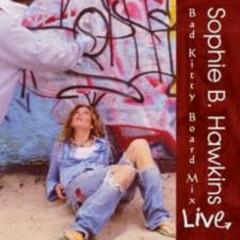 Bad Kitty Board Mix (CD2) - Sophie B. Hawkins