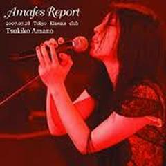 Amafes Report 2007