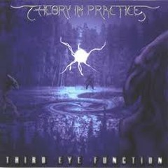 Third Eye Function - Theory In Practice