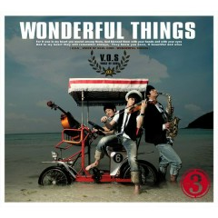 Wonderful Things (3rd Album) - V.O.S