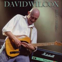 Boy In The Boat - David Wilcox