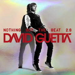 Nothing But The Beat 2.0 (CD2)