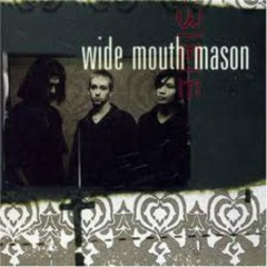 Wide Mouth Mason - Wide Mouth Mason