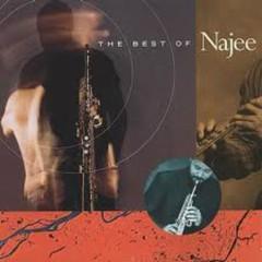 The Best Of Najee - Najee