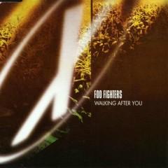 Walking After You (German CD Single)