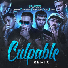 Culpable (Remix) (Single)