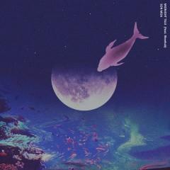 Midnight Talk (Single)
