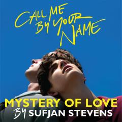 Mystery Of Love (Call Me By Your Name OST) - Sufjan Stevens
