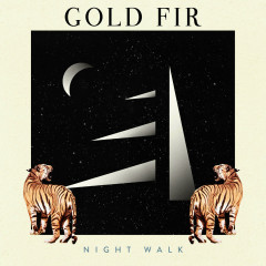 Night Walk (Single)