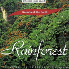 Rainforest - David Sun