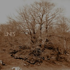 EP  - Lines
