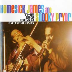 The Big Bear Sessions (CD 1) - Homesick James,Snooky Pryor