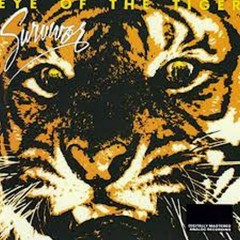 Eye Of The Tiger (Japan Remasters)
