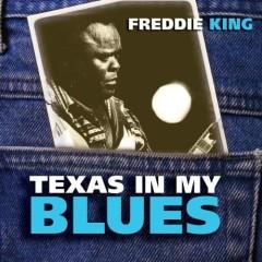 Texas In My Blues - Freddie King
