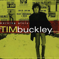 Morning Glory The Tim Buckley Anthology (CD2)