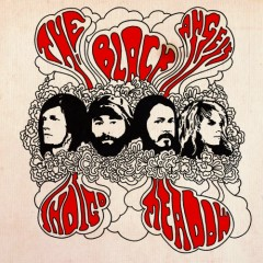 Indigo Meadow - The Black Angels