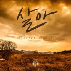 The 3rd Digital Single Soullad