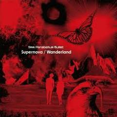 Supernova Wanderland