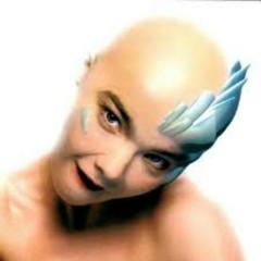 Hunter (UK Box Set) (CD3) - Björk
