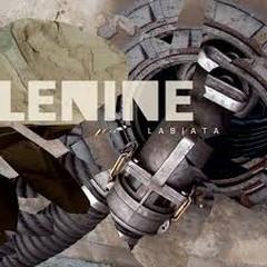 Labiata - Lenine