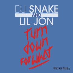 Turn Down For What (Single) - DJ Snake,Lil Jon