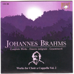 Johannes Brahms Edition: Complete Works (CD38)