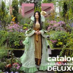 Catalog Delux Cd3