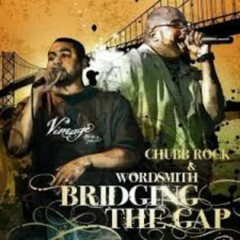 Bridging The Gap LP - Chubb Rock