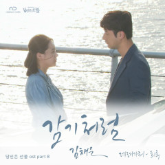 You Are A Gift OST Part.8
