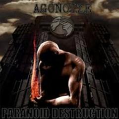 Paranoid Destruction